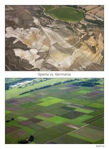 spania-vs-germania