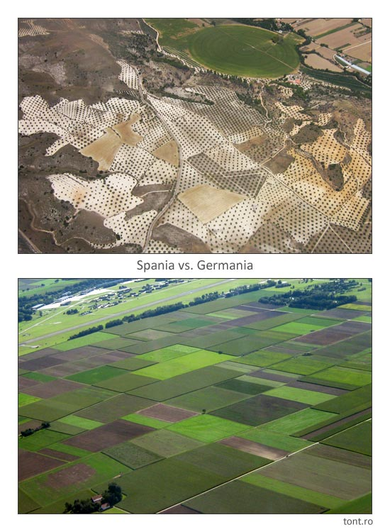 Spania vs. Germania